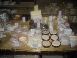 Vive Le Cheese Affineur Room (4)
